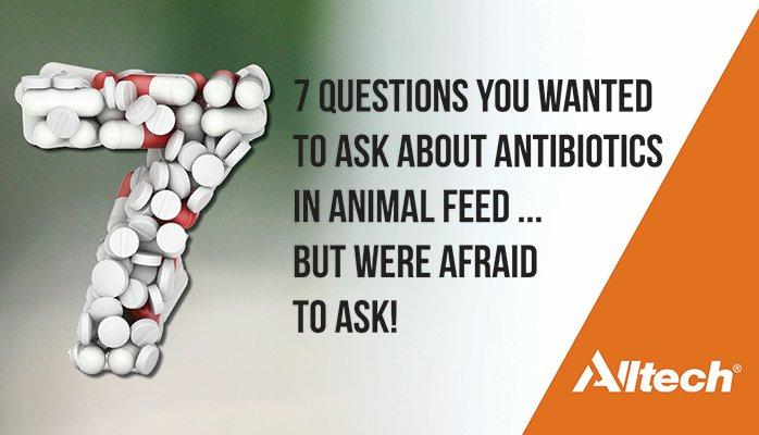 antibiotic resistance in animals pdf
