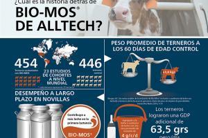 Bio-Mos® aumenta la ganancia de peso diaria en terneras y la producción de leche durante la primera lactación