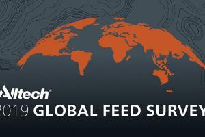 La Encuesta Global sobre la Producción Mundial de Alimentación Animal de Alltech 2019 estima que la producción mundial de pienso experimentó un importante incremento del 3% alcanzando 1.103 millones de toneladas
