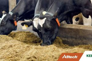 Coping with a feed shortage