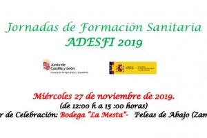 Jornadas de Formación Sanitaria ADESFI - 2019