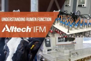 Alltech IFM Newsletter