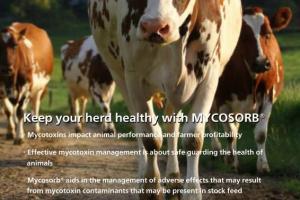 Alltech Mycotoxin Management
