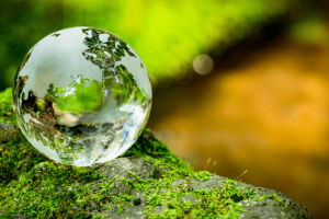 A agricultura continuará a ser um dos setores vitais no sequestro de carbono e uma parte importante da resposta às alterações climáticas.