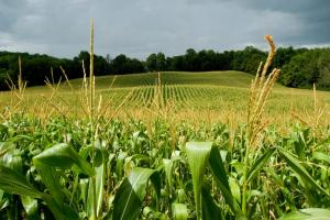 Alltech Crop Science obtiene el registro como bioestimulantes